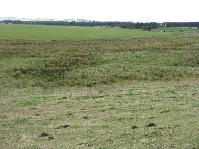 Fields by the B7007