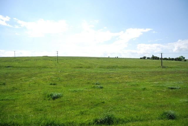 Farmland near Embleton