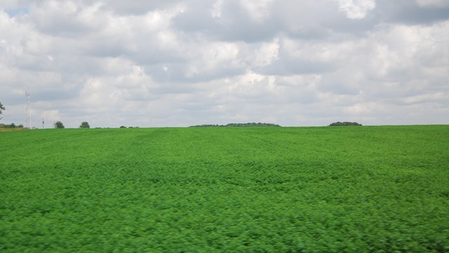 Large arable field by the A11