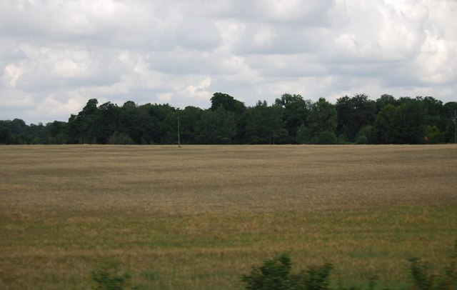Field by the A11