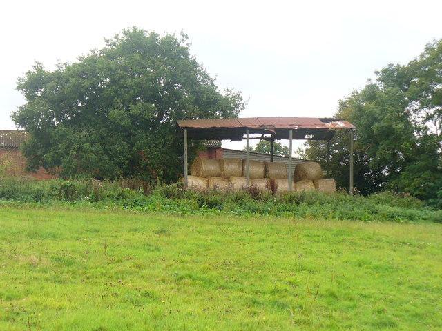Charleshurst Farm
