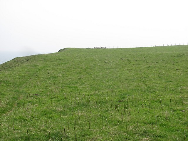 "Berwickshire Coast Path - ""last field of freedom"""