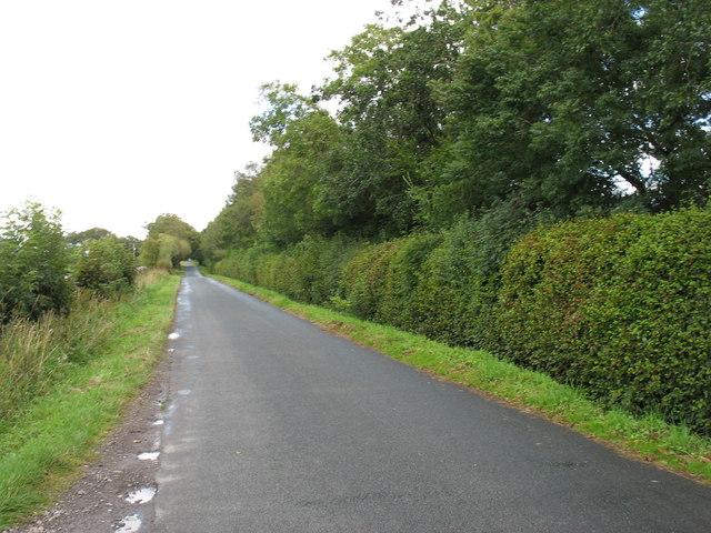 The Greystoke road