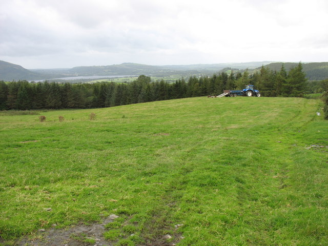 Fields and woods above Melbecks