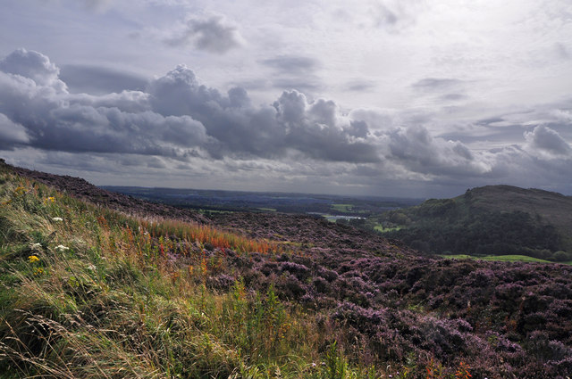 Blackshaw Moor from Ramshaw Rocks