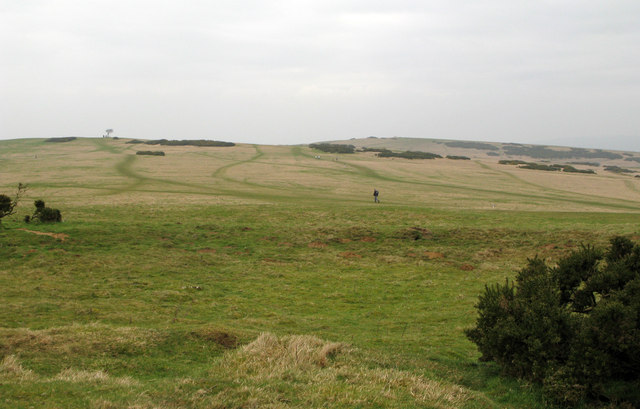 Rough grassland of Cleeve Common