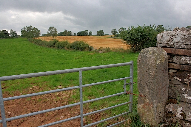 Fields, Baron's Hill