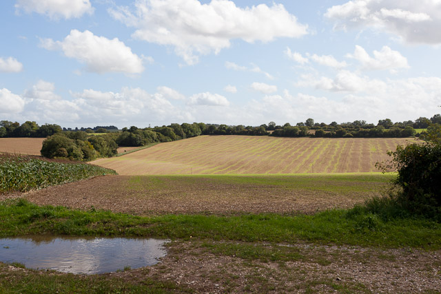 Field south of Hydes Barn