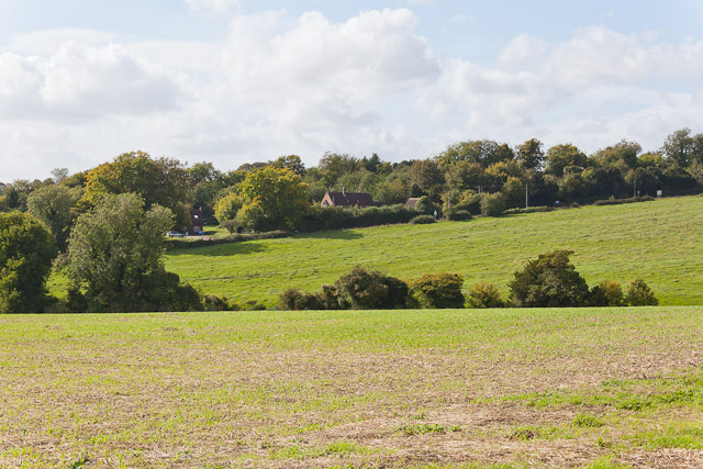 Looking across fields to Morestead Hill House