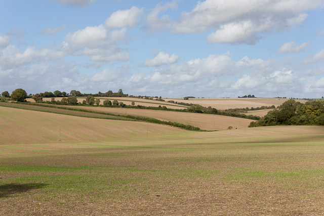 Arable landscape on Warren Farm