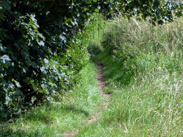 Folkestone, North Downs Way