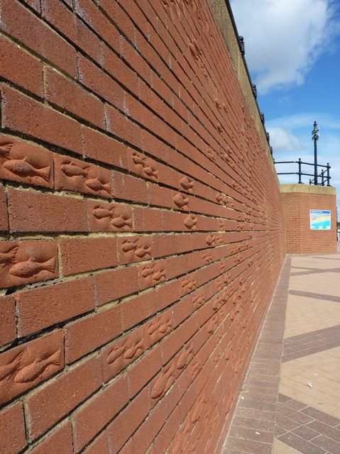 Fish relief on the Prom Wall