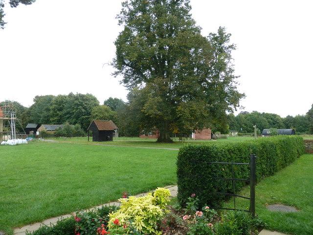 COAM 55: view from the schoolroom