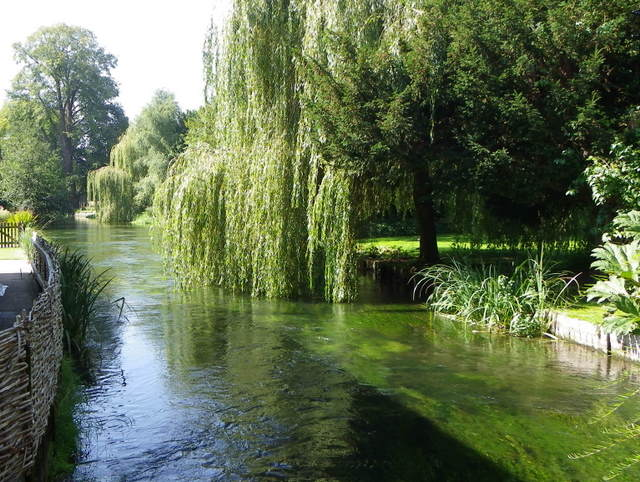 River Test, Wherwell