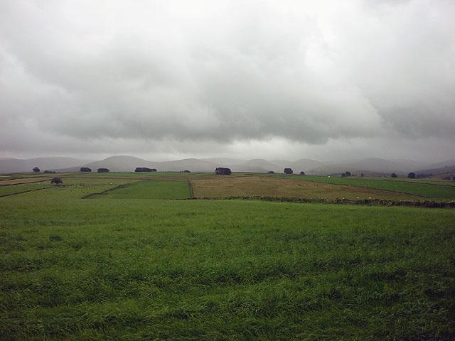 Pastures near Raisbeck