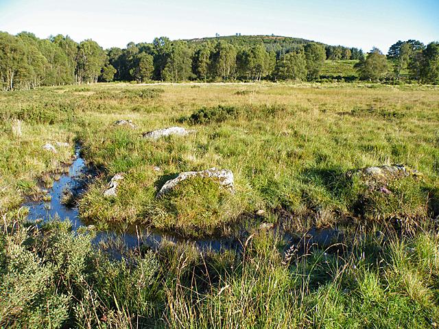 Boggy Ground below Mulloch