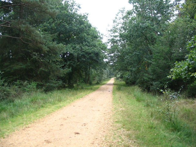 Heading towards Pignall Hill