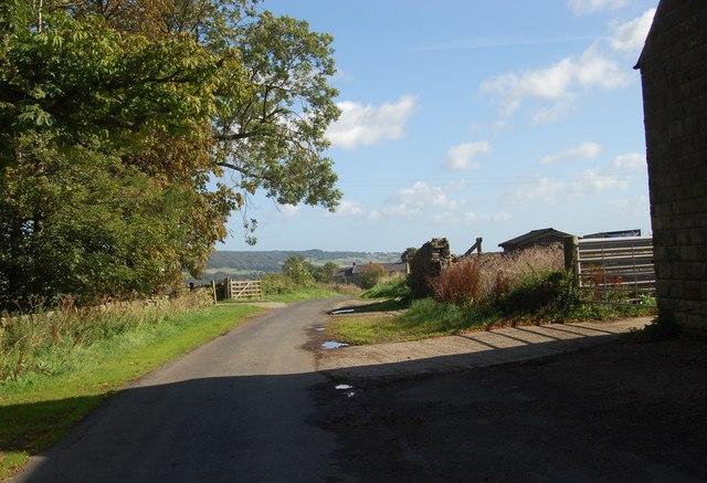 Road by High Burrows Farm