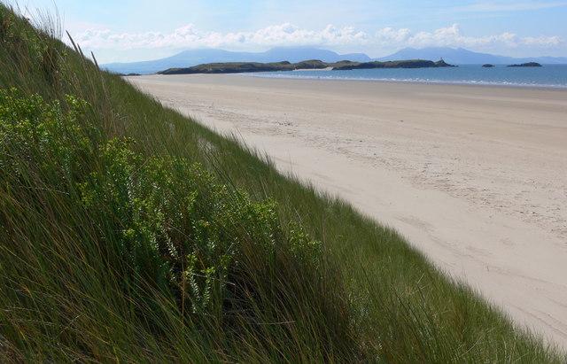 Sand dune at Traeth Penrhos