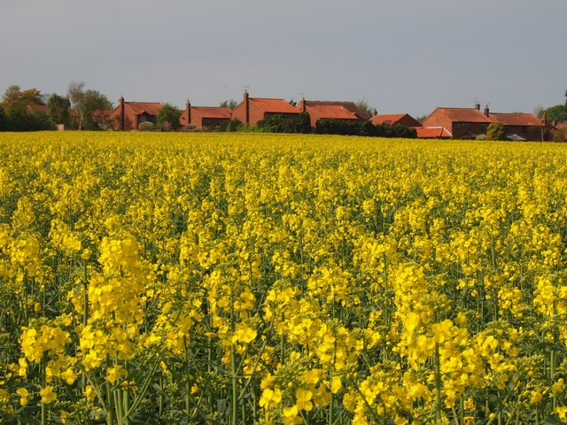 Over the Crop to Cropwell