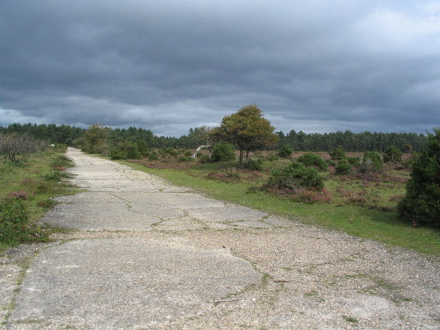 Beaulieu Heath