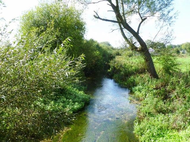 Hurdcott, River Bourne