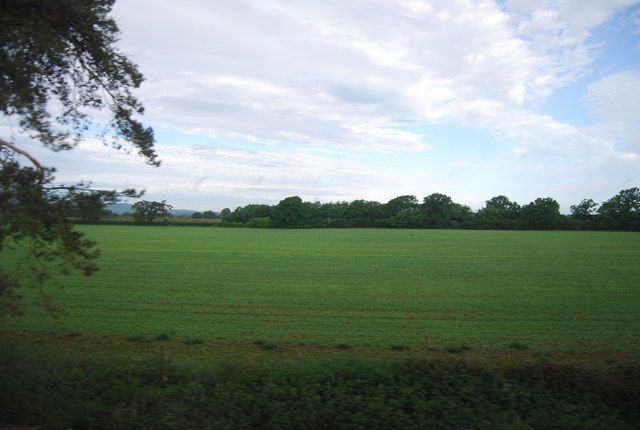 Arable field between Stane Street and the Arun Valley Line