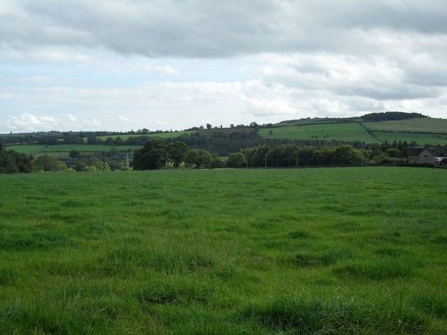 Farmland East of Wheelbirks