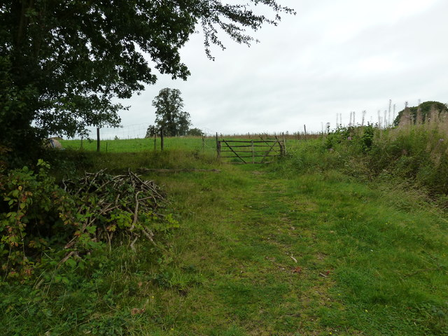 COAM 110b: looking westwards from the Iron Age Farm
