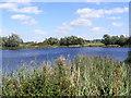 TM2950 : Wilford Bridge Fishing Lake by Geographer