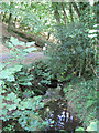 SX8181 : Notices below Beadon Bridge  by Robin Stott