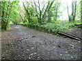 NT2372 : Harrison Sidings near the former Merchiston Station by kim traynor