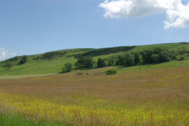 Grassland & NW slopes of Hall Hill