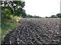 NZ0862 : Ploughed field east of Mickley Square by Andrew Curtis