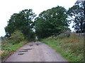 NY6031 : Track southeast of Williekeld Sike by Alexander P Kapp