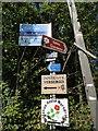 SJ3174 : Signs in Burton by Tim Evans