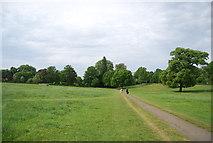 TQ1873 : Footpath across Petersham Common by N Chadwick