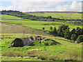 NY9546 : Disused mine shaft above the cleugh of Boltswell Sike by Mike Quinn