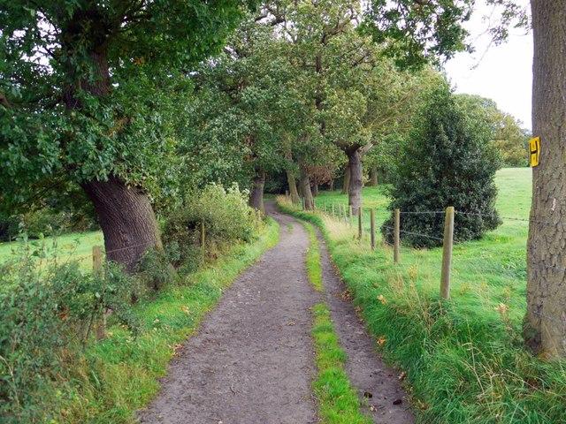 Eltringham byway east of Oakwood