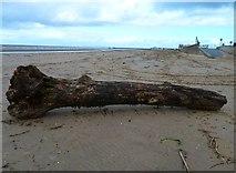 NS3321 : Ayr Beach by Andy Farrington