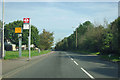 TQ5981 : Elwick Road bus stop by Robin Webster