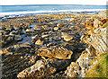 NJ1871 : Sandstone Shore by Anne Burgess