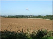 SE5214 : Farmland of Whiteley Road by JThomas