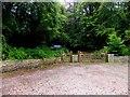 C2826 : Entrance, Rathmullan Wood by Kenneth  Allen