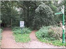 TQ4475 : Path enters Eltham Park North by David Anstiss