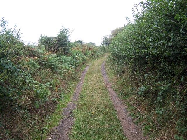 Footpath Near Badger