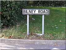 TM2649 : Bilney Road sign by Geographer