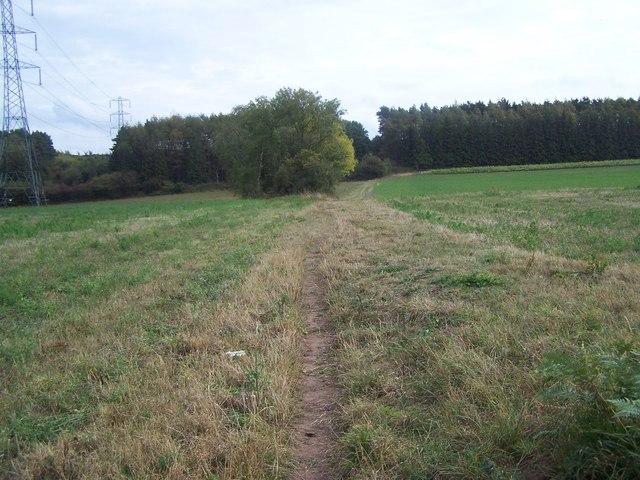 Footpath Towards Beckbury