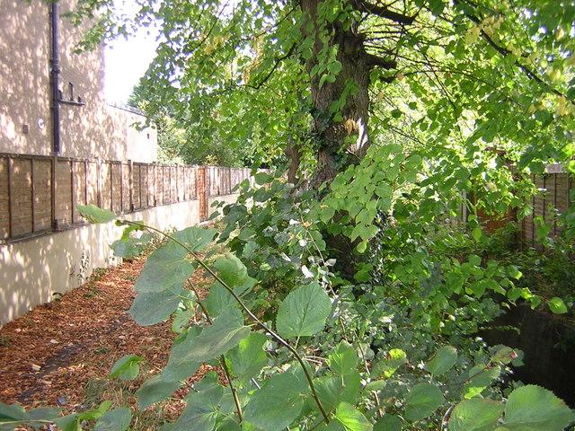 Norbury Brook at Bensham Close