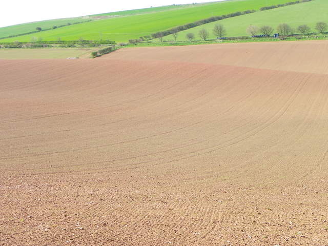 Ploughed field near St Abbs